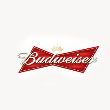 Budwesier 30 ltr/53 pints€195.00